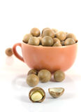 Macadamia nuts. Shelled and unshelled macadamia nuts Royalty Free Stock Images