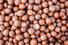 Macadamia nuts. Stock Photos