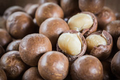 Macadamia nuts with shells Stock Photos