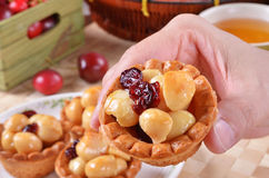 Macadamia nuts tart Royalty Free Stock Images