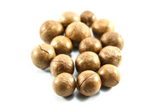 Macadamia Nuts Royalty Free Stock Images
