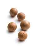 Macadamia nuts Royalty Free Stock Photography
