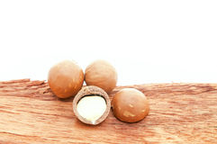 Macadamia nuts Stock Photography