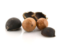 Macadamia nuts on white background. Stock Images