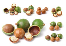 Macadamia nuts  on white background Royalty Free Stock Photography