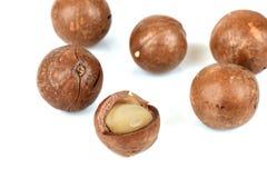 Macadamia nuts on white background. Stock Photos