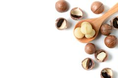 Macadamia nuts on wood spoon isolated. On white background with copy space Royalty Free Stock Photo