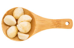Macadamia nuts on wooden spoon Royalty Free Stock Images
