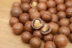 Macadamia nuts Royalty Free Stock Image