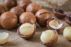 Macadamia nuts on wooden table Stock Photography