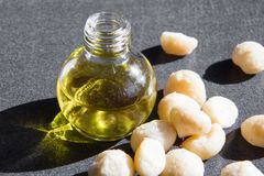 Macadamia oil in the bottle and nuts Royalty Free Stock Photo