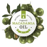 Macadamia oil label with hand drawn nuts. Macadamia oil round label with type design over hand drawn nuts background. Vector illustration Stock Image