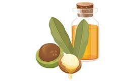 Macadamia olie en noten Royalty-vrije Stock Foto's