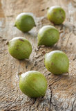 Macadamia in schil Royalty-vrije Stock Foto's