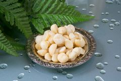 Macadamia. Shelled Macadamia nuts and the green leaves Royalty Free Stock Photo