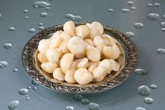 Macadamia. Shelled Macadamia nuts on the plate at the table Stock Image