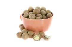 Macadamia Stock Images