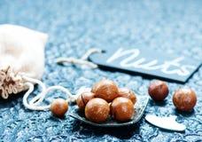 Macadamia Stock Image