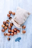 Macadamia Royalty Free Stock Photos