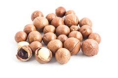 Macadamia on. White  background Royalty Free Stock Photography