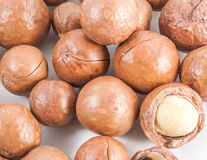 Macadamia on  Royalty Free Stock Photos