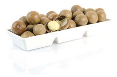 Macadamia in  white bowl Stock Photography
