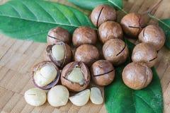 Macadamia on wood table. Stock Photos