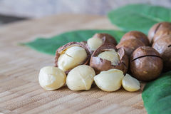 Macadamia on wood table. Royalty Free Stock Images