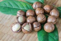 Macadamia on wood table. Stock Photography