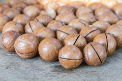 Macadamia on wood table. Stock Image