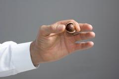 Macadamiamutter i mannens hand royaltyfria foton