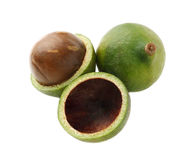 Macadamiamuttern auf weißem Hintergrund Stockfotos