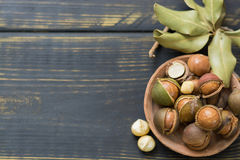 Macadamiamuttrar i skal Arkivbild