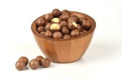 Macadamias. Stock Image