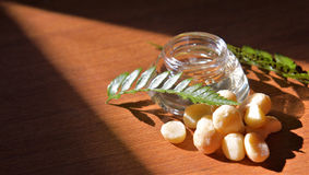 Macadamia Oil and Nuts Stock Image