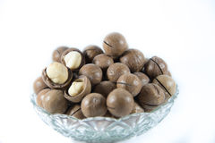 Macademia nut isolated on white background Royalty Free Stock Photography