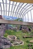 Macao Giant Panda Pavilion Stock Photo