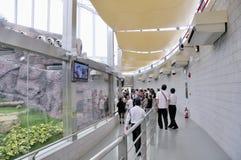 Macao Giant Panda Pavilion Stock Image