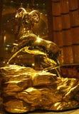 Macao złoci cakle Fotografia Stock