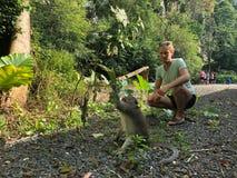 Macaque grappig met een slimme blik die een tak houden, en blond g royalty-vrije stock afbeeldingen