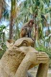 Macaque i Vietnam arkivbild