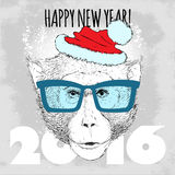 Macaque monkey Hipster with blue glasses and Christmas hat. Stock Images