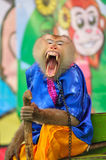 Macaque is yawning during Thailand monkey show. Royalty Free Stock Photo