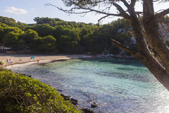 Macarella beach seen among the trees on a sunny morning, Minorca Stock Photography