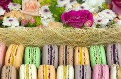 macaron κέικ, μπισκότα με τις διαφορετικές γαρνιτούρες φρούτων, λουλούδια, ρ Στοκ Εικόνα