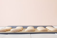 Macaron on baking sheet low Stock Images