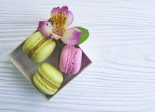 Macaron in a box on bakery white wooden background alstroemeria flower. Macaron in a box on a white wooden background alstroemeria flower bakery Royalty Free Stock Images