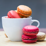 Macaron in coffee cup Stock Images