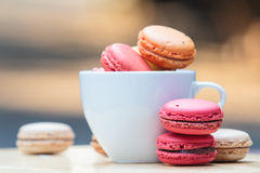 Macaron in coffee cup Royalty Free Stock Photo