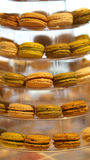 Macaron coloful efterrätt Arkivfoton